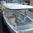 Alfastreet Marine 23 Open Electric